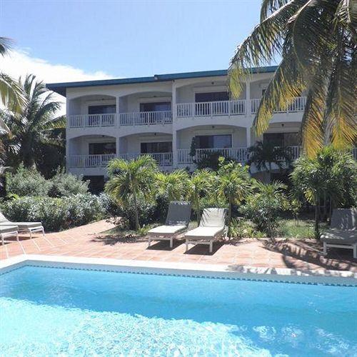 Allamanda Anguilla