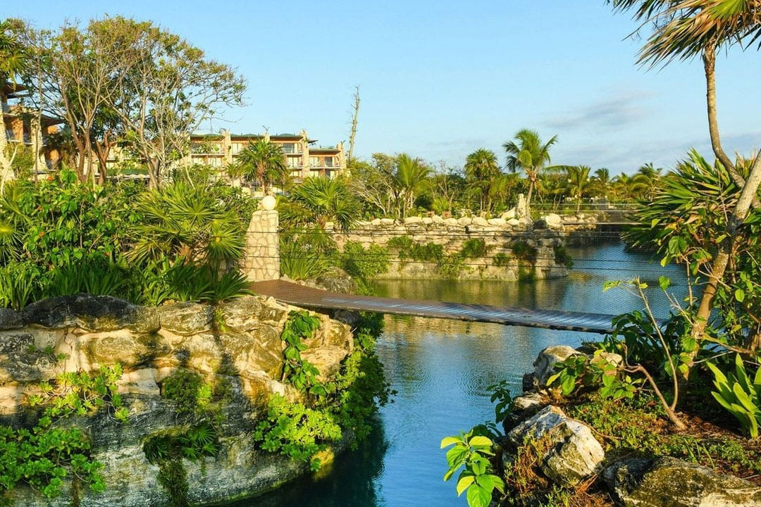 A sneak peek of the nature-inspired environment at Hotel Xcaret Arte