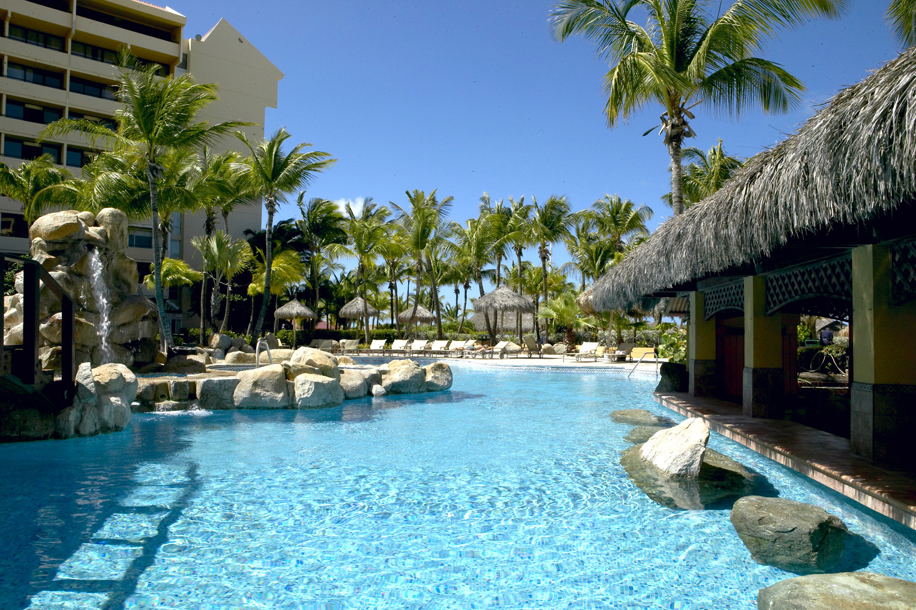 Occidental grand aruba resorts daily for Daily hotel
